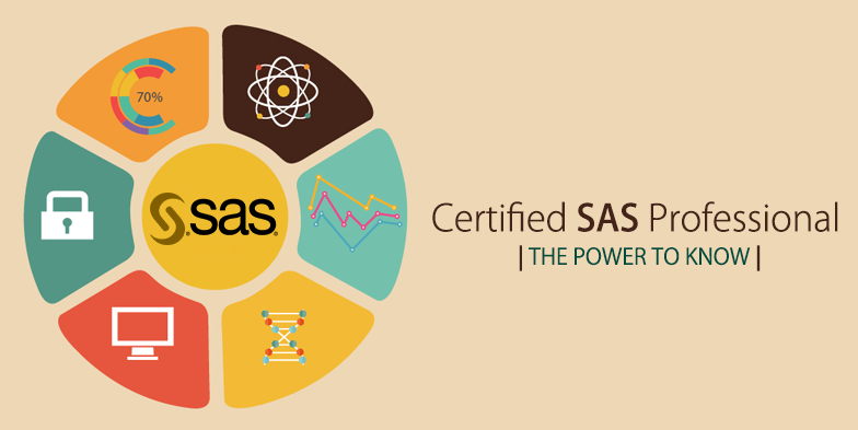 SAS Overview & Introduction